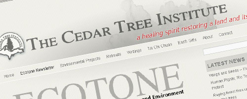 The Cedar Tree Institute