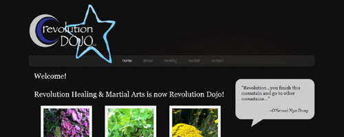Revolution Dojo LLC