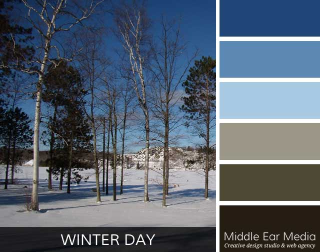 Winter Day Color Palette