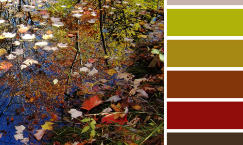 Autumn Forest Color Palette