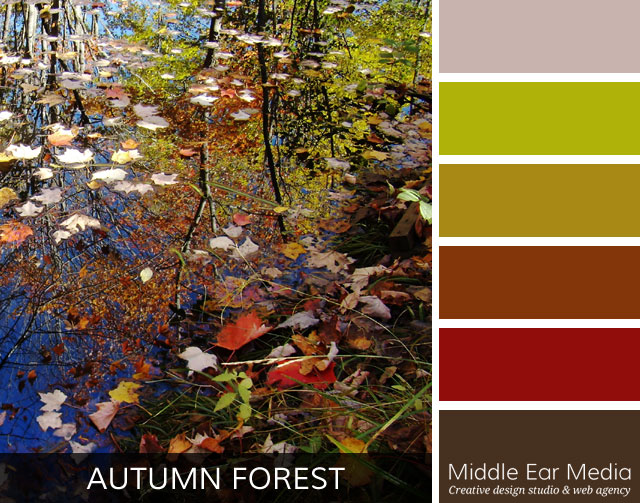 Autumn Forest Color Palette Website Design Marquette Mi