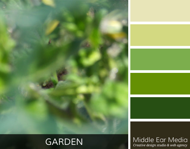 Garden Color Palette