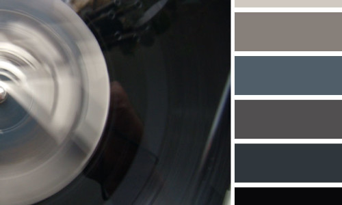Vinyl Reflections Color Palette